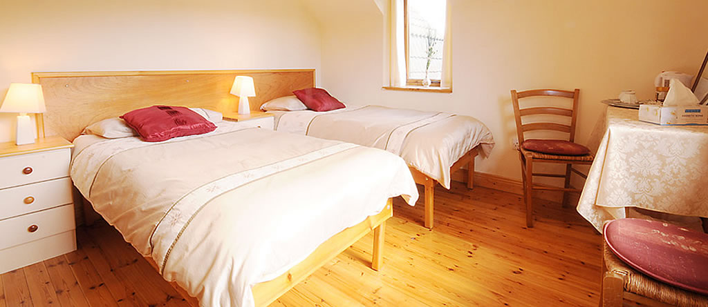 accommodation-walkingholiday-wicklow