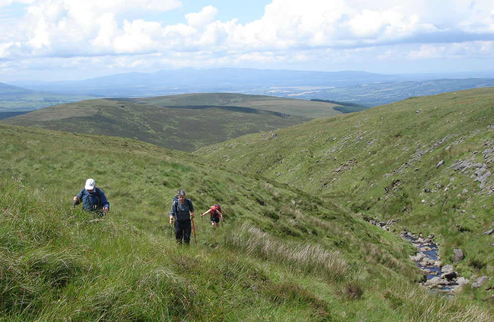 Guided Walking Tour Wicklow Ireland